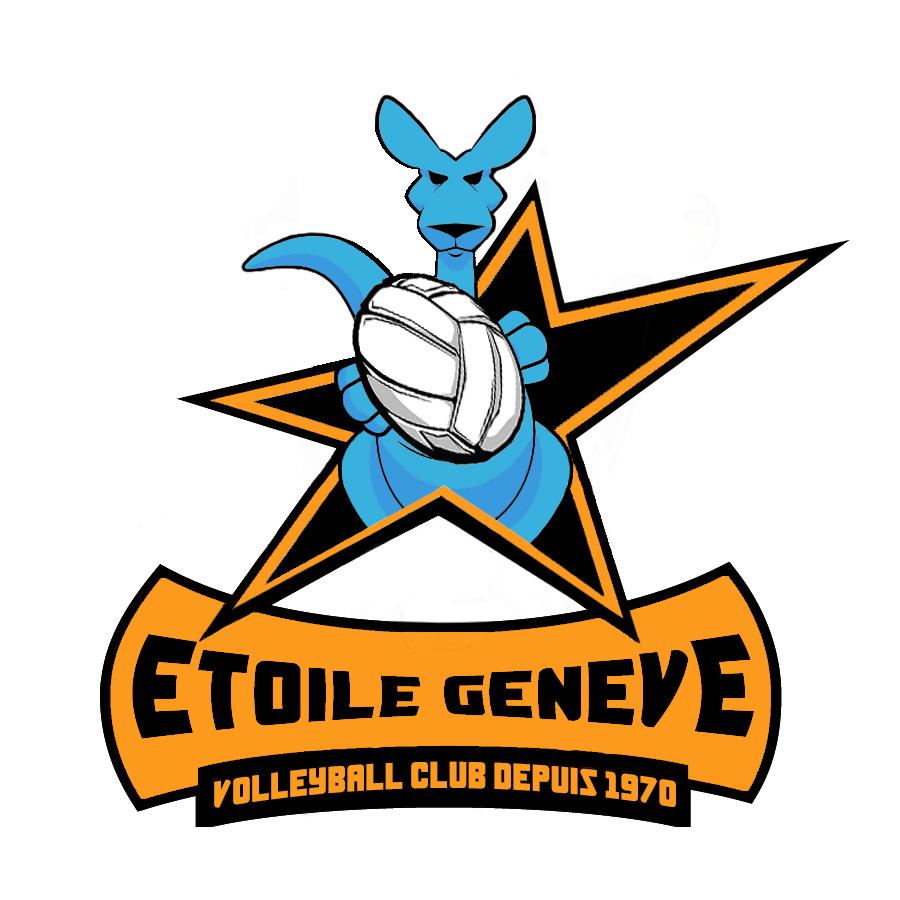 Bienvenue sur le site du Volleyball Club Etoile-Genève